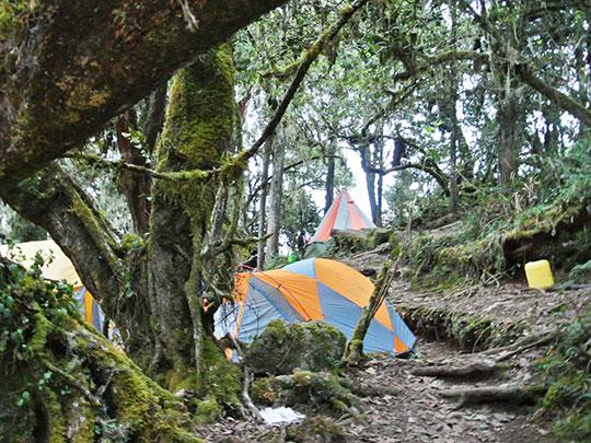 kilimanjaro-trekking-umbwe-caves-camp
